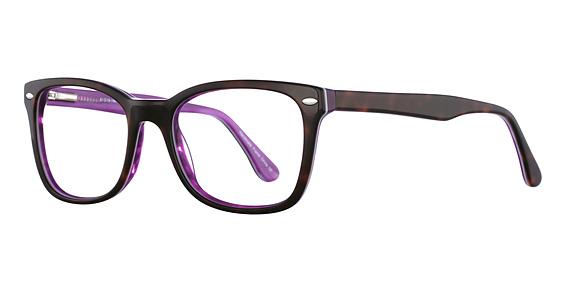 Tortoise/Purple